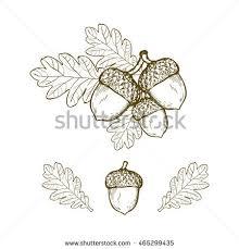 oak leaf stock images royalty free images u0026 vectors shutterstock