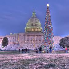 mcpherson square washington d c capitol christmas tree