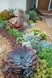 Rock Garden Succulents Amazing Modern Rock Garden Ideas For Backyard 51 Garden Ideas