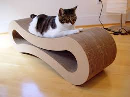 12 coolest pet beds pet beds pet bed oddee