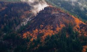 Wild Fire Columbia Gorge by Your First Look At The Post Fire Columbia River Gorge Willamette