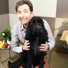video david tennant talks fireman sam good morning britain