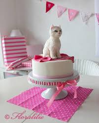 8 of the Cutest Cat Cakes Catster