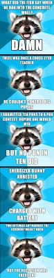 Meme Generator Raccoon - meme puns