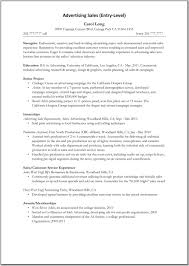 Professional Affiliations For Resume Examples by Advertising Sales Resume Sample Free Resume Example And Writing