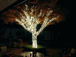 lights for tree outdoor hanging medium size of branches on