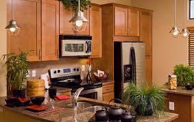all wood kitchen cabinets online home design ideas