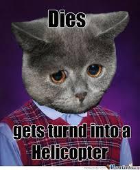 Good Luck Cat Meme - bad luck cat by recyclebin meme center