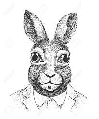 classic rabbit portrait of rabbit classic ink illustration isolated