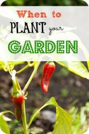 Backyard Botanical Complete Gardening System Angee Bee U0027s Backyard Botanical Complete Gardening System Detailed