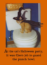 Halloween Cat Meme - funny halloween ecards cats cardfool free printout included