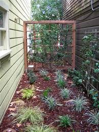 star jasmine on trellis turned earth o u0027connell landscape u0027s blog recent plantings