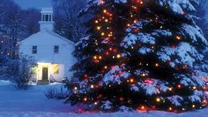 large outdoor christmas tree lights christmas lights decoration