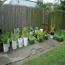 Vegetable Container Garden - container garden ideas