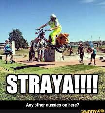 Funny Australia Day Memes - 146 best straya images on pinterest aussie memes australia