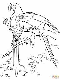 paper coloring pages newcoloring123