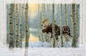 pumpernickel press wildlife cards the move moose boxed christmas cards