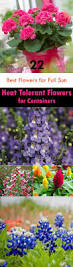 landscapesgardens design humboldt botanical gardens idolza