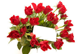 flowers for you wishes and greetings with cards hd photos