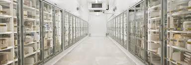 chambre froide pdf dreyer chambres froides cloisons et panneaux isothermes pour la