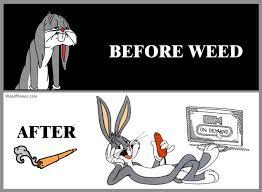 Meme Cartoon - bugs bunny before after weed cartoon marijuana memes weedmemes com
