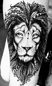 68 best aslan tattoo images on pinterest animals tatoo and