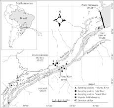 Parana River Map Isotopic Niches Of Sympatric Native And Exotic Fish Species In A