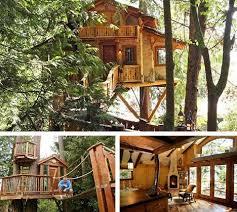 Top 10 Tree Houses  MRSofMR