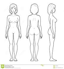 Female Body Anatomy Drawing Images For U003e Female Human Body Outline Front And Back Things To