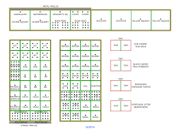flower garden layout plans design for flower bed planner 9113