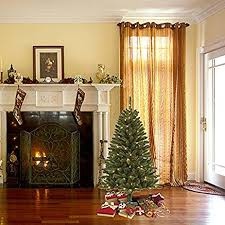 color switch plus 4 5 ft vancouver fir tree