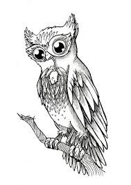 owl on skull tattoo sample photos pictures and sketches