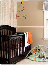 Outdoor Themed Baby Room - baby nursery ideas