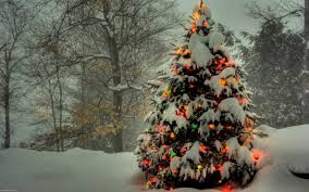100 forest home decor 5 piece colorful scenery canvas the beautiful christmas tree christmas lights decoration wallpapers 2560x1600 a beautiful christmas tree covered with snow