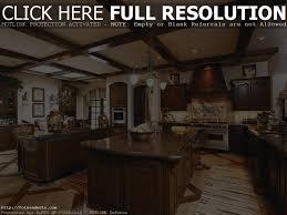 expensive kitchens designs best kitchen designs