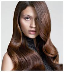 Dark Hair Colors And Styles Chocolate Brown Hair Color