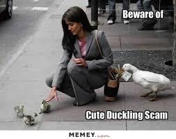 Funny Duck Meme - duck memes funny duck pictures memey com