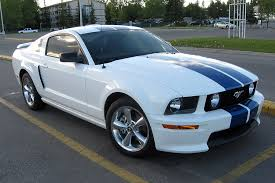white mustang blue stripes 2 questions on the gt cs the mustang source ford mustang forums