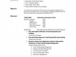 Build Your Own Resume Download Make Your Own Resume Haadyaooverbayresort Com