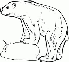 polar bear coloring pages pixelpictart com