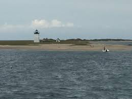 Whale Watches Cape Cod - is a cape cod whale watch worthwhile bashfuladventurer com