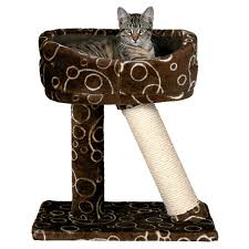 Cat Scratch Lounge Trixie Dreamworld Cabra Cat Scratching Post U0026 Bed Petco
