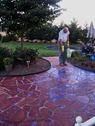 Dry Laid Bluestone Patio by This Grandmother U0027s Garden A Surprise Finish Part Four Of Our Diy