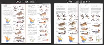 new revised eastern and western field guides sibley guides