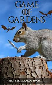 169 best weeds and pests images on pinterest organic gardening