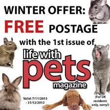 pets magazine launches digital issue pet blog lady