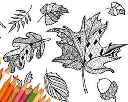 leaf coloring page etsy