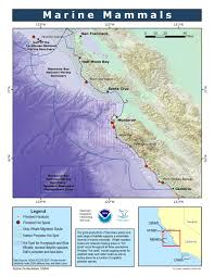 Point Lobos State Reserve Map by Mbnms Marine Mammals Simon