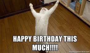 Cat Happy Birthday Meme - grumpy cat birthday meme happybirthdaybuzz com