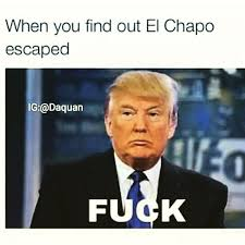 Funny Quotes For Memes - 50 funniest donald trump meme images and photos on the internet